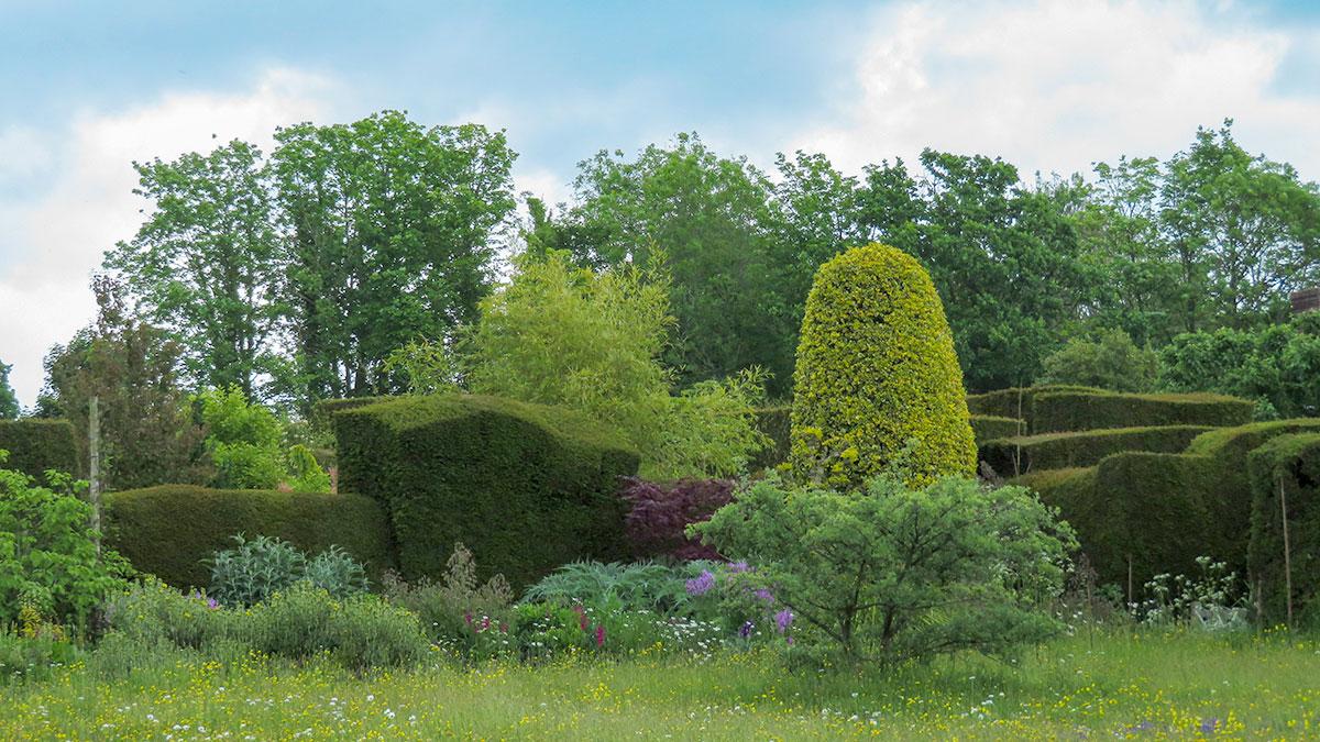 Progettare Un Giardino In Campagna le basi per progettare il nostro spazio verde • green ffink