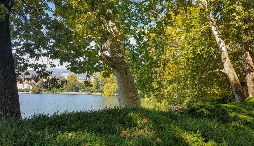 GreenFFink Videa Lugano parco Ciani