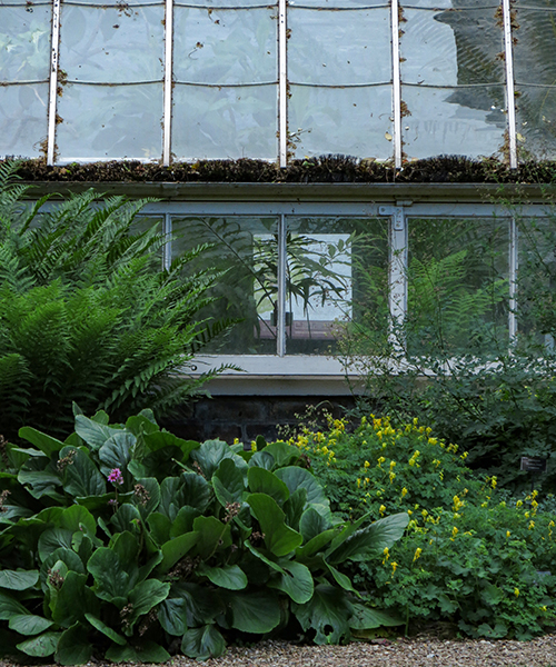 Chelsea Physic Garden, l'esterno The Cool Fernery