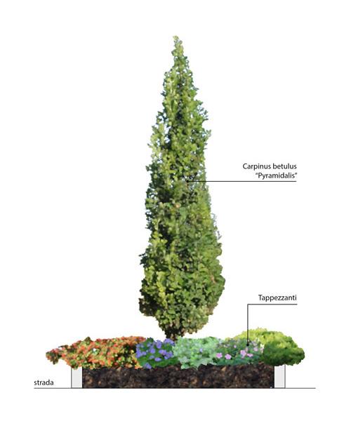 Planimetria in Photoshop Progettista del verde o garden designer