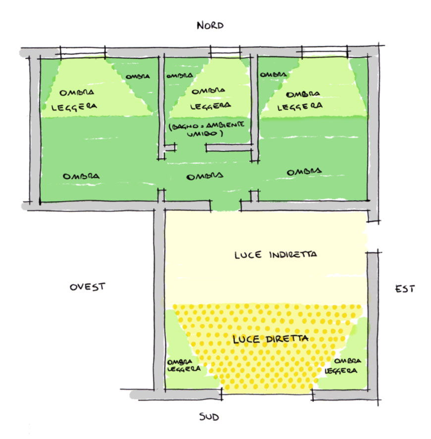 Capire i diversi livelli di luce per le piante da interni
