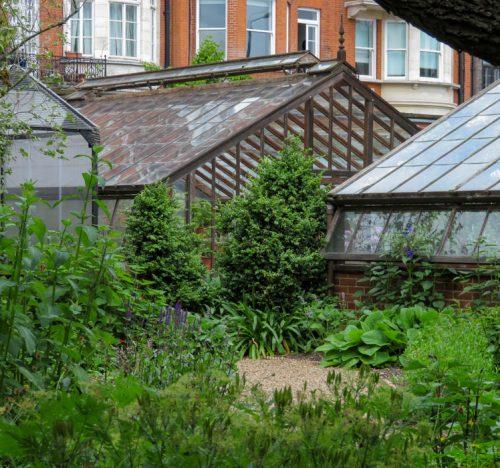 Le serre del Chelsea Physic Garden