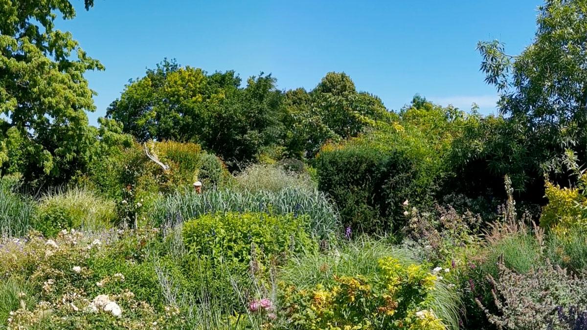 giardino fioritura estiva