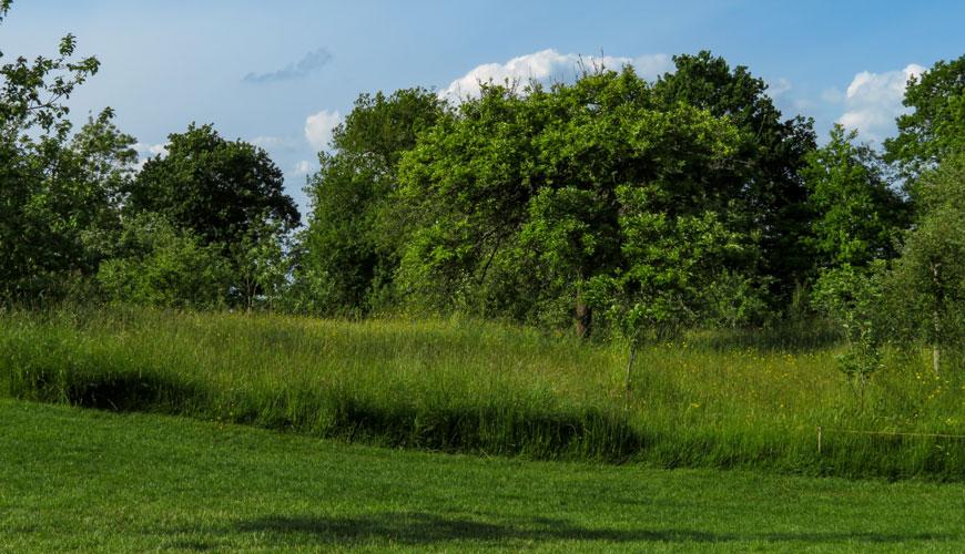 The Orchard, Sissinghurst Castle Garden