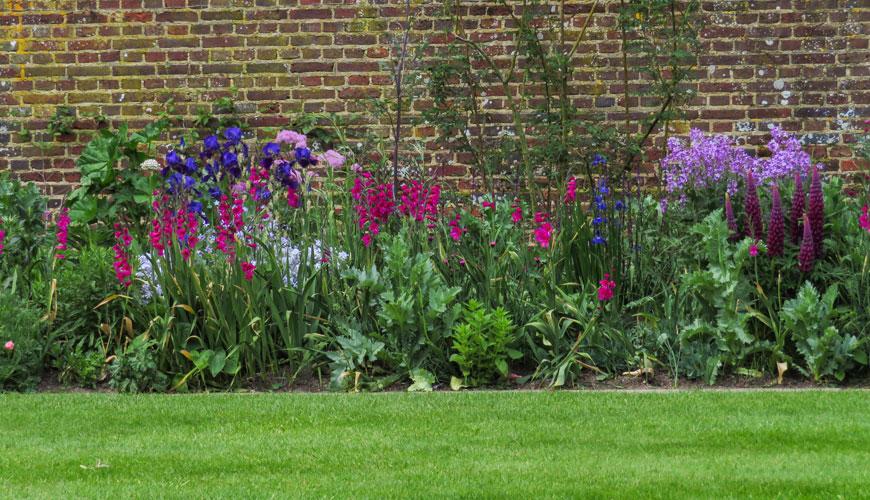 Purple Borden di Sissinghurst Castle Garden
