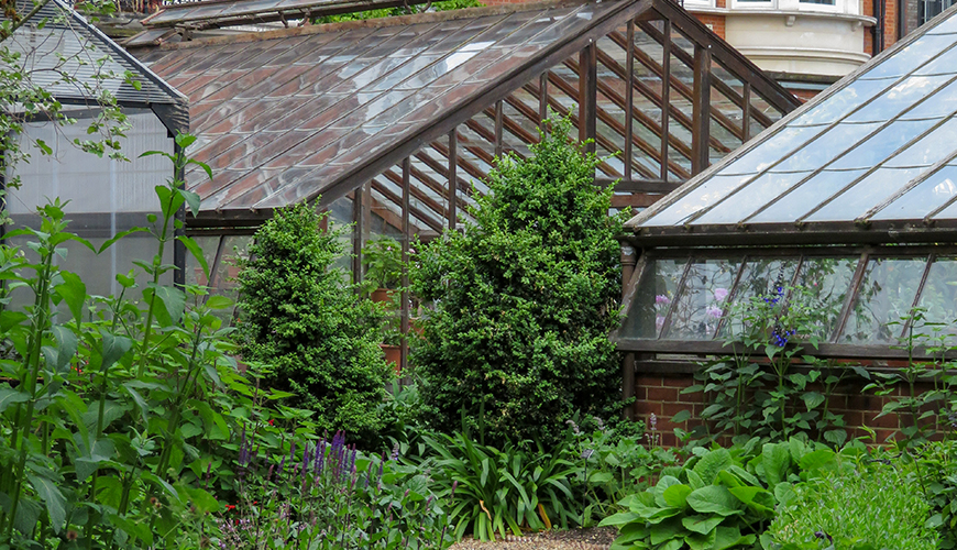Chelsea Physic Garden, Greenhouses